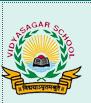 VINAYAK PUBLIC SCHOOL-logo