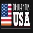 Opulentus Overseas Careers_logo