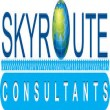 Skyroute Consultants_logo