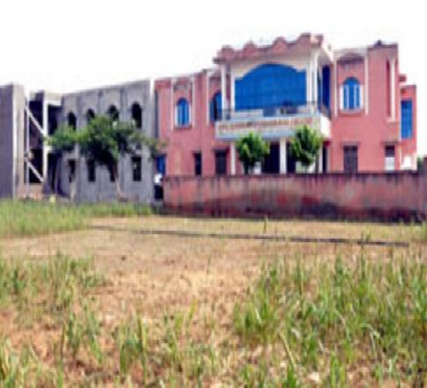 Sarbati Devi Teacher Training College-cover