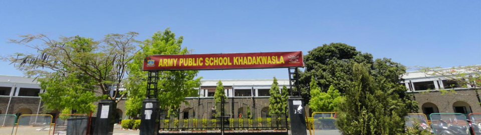 Army Public School_cover