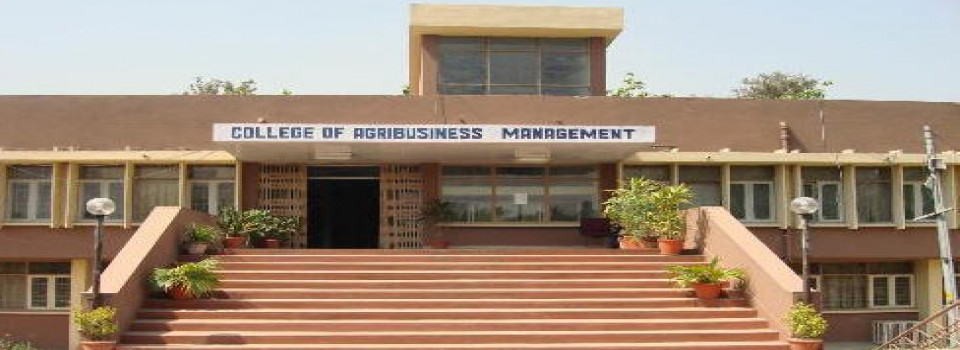 College of Agribusiness Management_cover